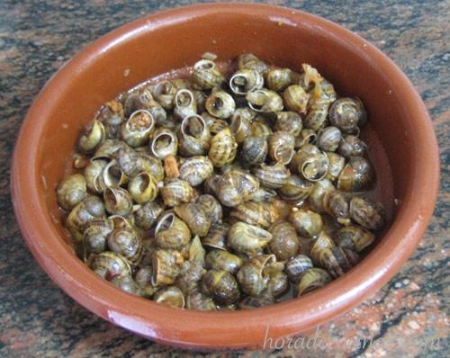 caracoles-estilo-flora1